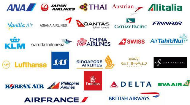 スカイトラベラー 対象航空会社